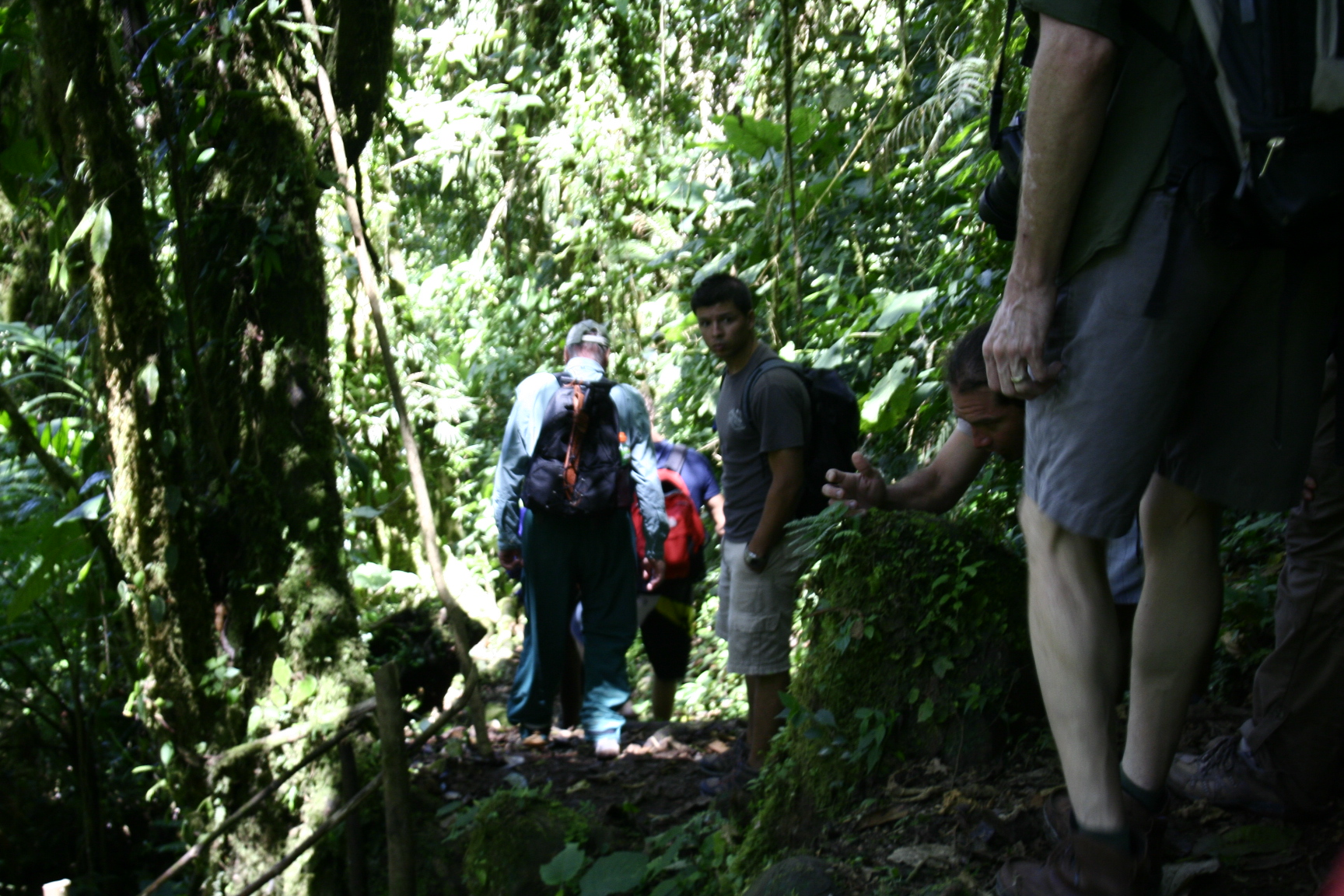Hiking in Bajo Mono Waterfalls Panama Tropical Forest